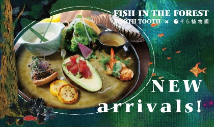 FISH IN THE FOREST / MENU・NEW arrivals!