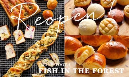 神戸メリケンパークの「FISH IN THE FOREST」Reopen!